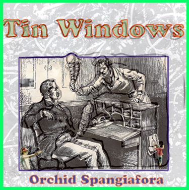 Tin Windows 7 inch